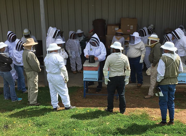 Interested residents huddle around Kerry Owens, owner of Bee Well Honey Farm and Supply, as he teaches beekeeping basics. The store, located in Pickens, South Carolina, has held beekeeping courses since 1999. Photo courtesy of Bee Well Honey and Supply.