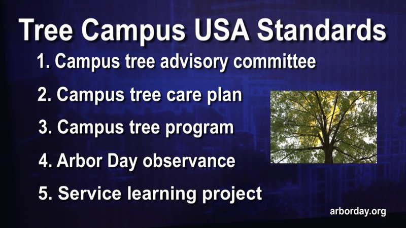 National Arbor Day Foundation Standards