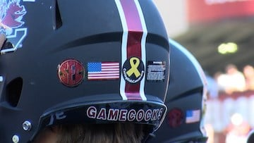 Players wore Curing Kids Cancer stickers on their helmets to raise awareness.