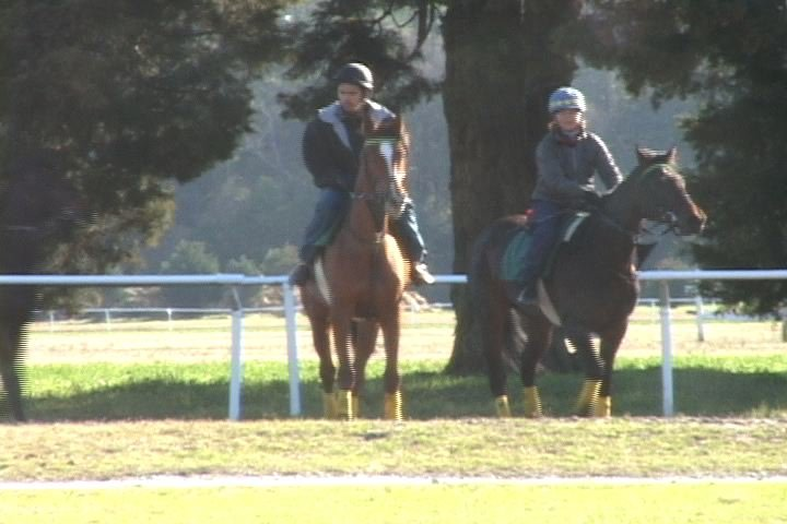 The jockeys practice on the horses to prepare for tomorrows race.