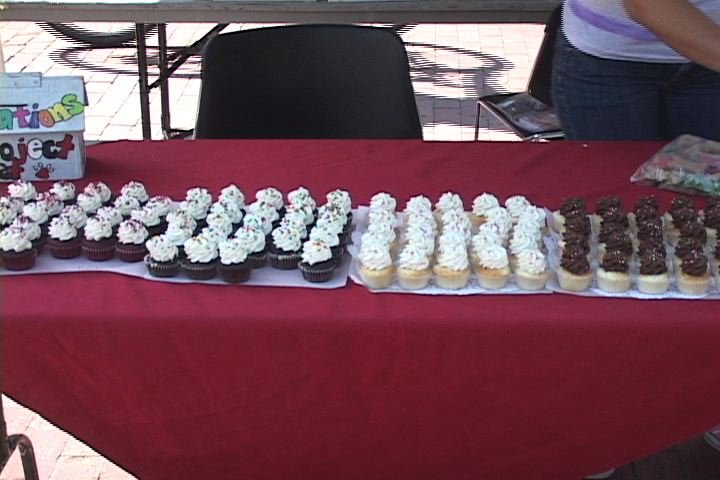 Students sold 500 cupcakes  a dollar each to raise money for Project Pet.