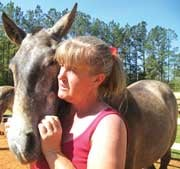 Sharon Knight, Noble Horse Farms co-owner in Saluda, said Andalusians are her favorite breed to work with, such as her two-year-old named Bondadosa. Knight said she is trying to wait out the poor economy before selling any of her horses again.