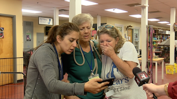 Three women show shocked reactions as they watch the viral video.