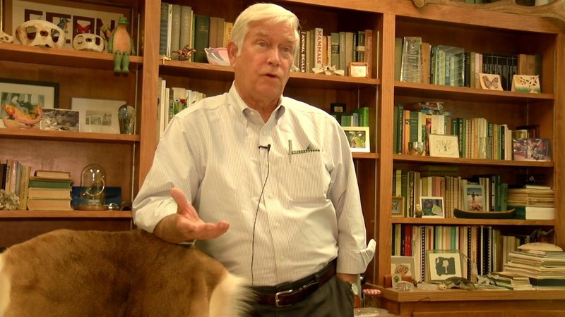 Rudy Mancke is the Naturalist in residence at USC. He explains how deer are impacted by coyotes.