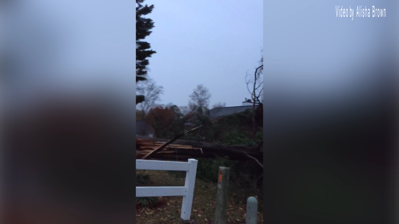 Video footage Alisha Brown took when assessing damage in her yard.