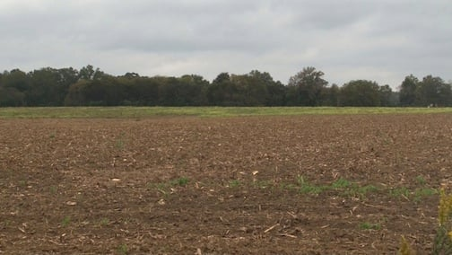 State regulators identified chicken manure spread on a farm off Beckham Swamp Road as the source of the stench.