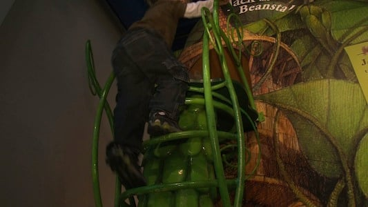 Children take on the role of Jack as they climb the famous beanstalk