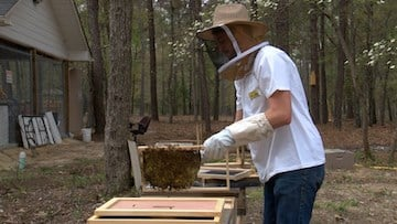 Beekeeper Caleb George began working with the Blythewood Bee Company after his college internship.