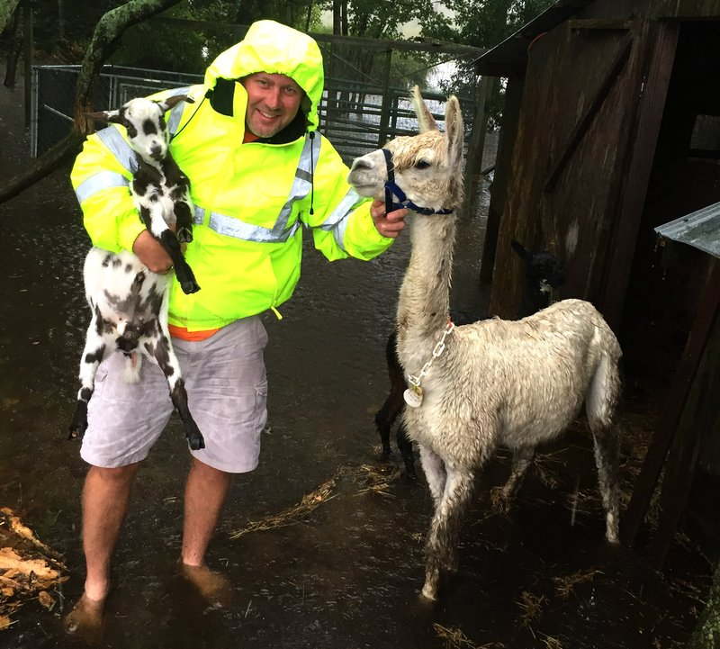 Joey Mincey, of Nichols, had to move his animals quickly once the flooding began in Nichols. The flooding caused the Little Pee Dee River to reach depths of over 17 feet, which is eight feet over the flooding level.