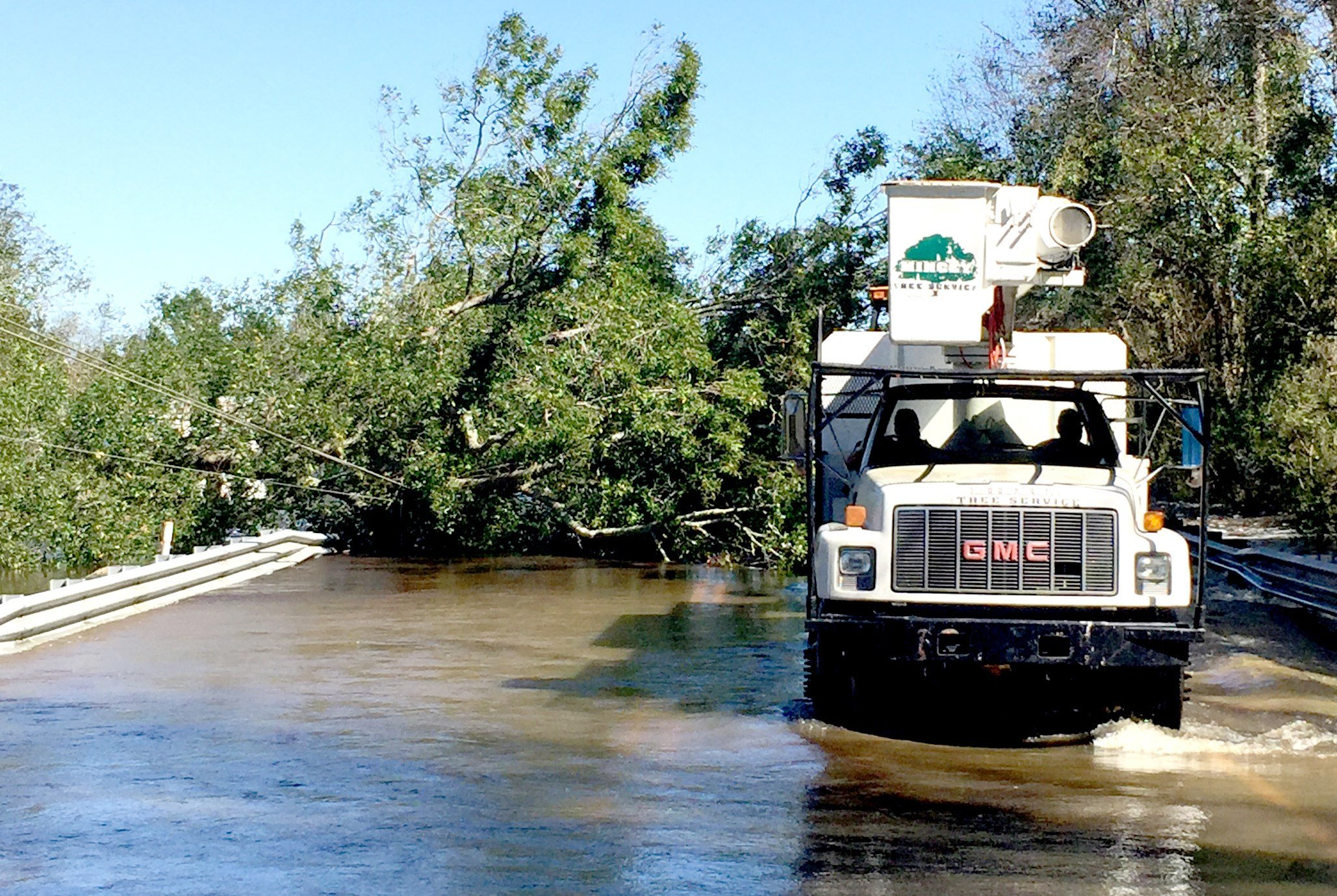 Joey Mincey's business, Mincey Tree Service, worked around the clock following Hurricane Matthew. Mincey is still working to complete insurance claims caused by the flooding.