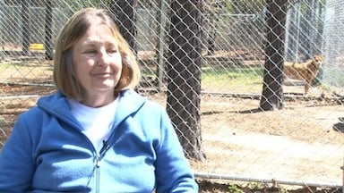 Linda Moore funds the Howlmore Animal Sanctuary out of her own pocket.