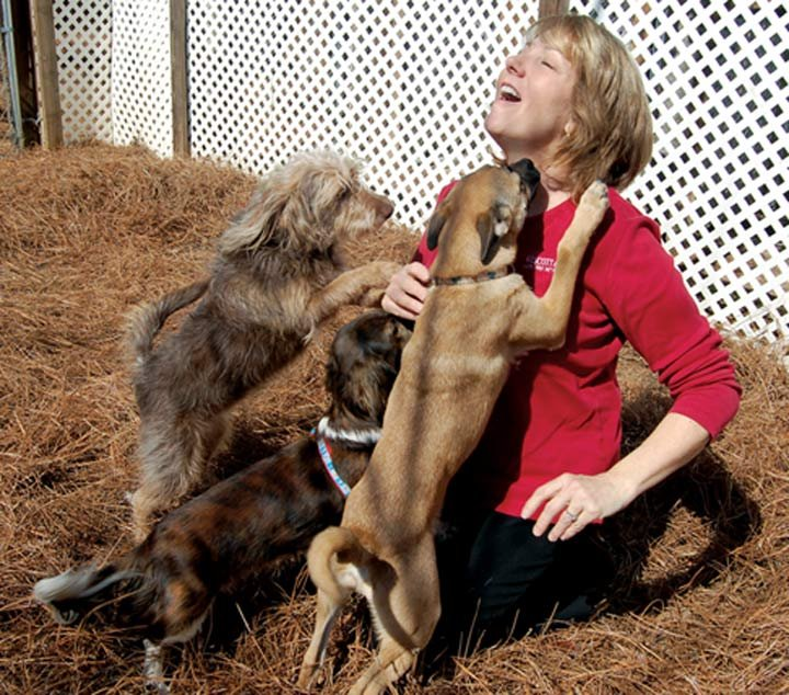 """Laura T. Mitchell opened Wescott Acres Luxury Pet Resort 10 years ago to follow her dream of working with animals full time. She said the animals she and her staff take care of are not just clients or customers, but her """"babies."""""""