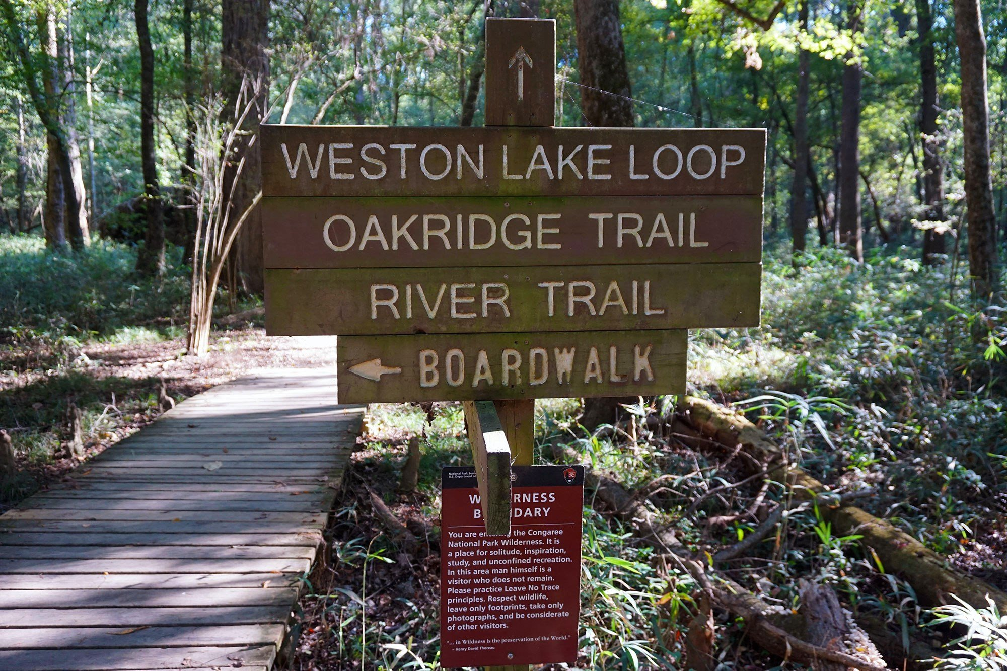 There are more than eight trails in the park that visitors can walk or hike. The trails can be self-guided or led by a park ranger.