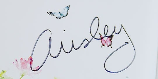 Fans obtained a special memento with Ainsley's signature in their books.