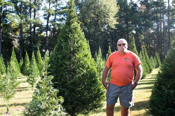 Bryan Price, owner of Price's Christmas Tree Farm in Lexington, standing next to his nine-foot trees that are ready for harvesting for the 2017 Christmas season.