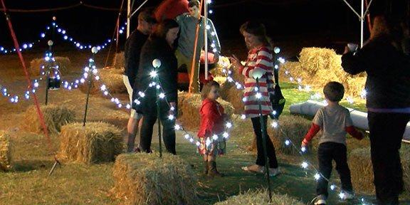 Families enjoy tube slides and marshmallow roasting, among other activities at Holiday LIghts.