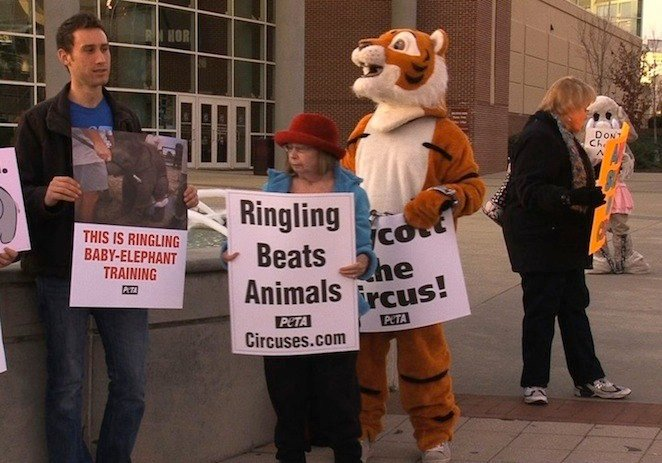 Protesters argue the circus should be animal free.