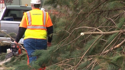 SCDOT worker Randy Hughes clears fallen trees from the shoulder of I-26.