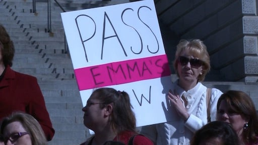 """Supporters of the """"Emma's Law"""" bill crowded the Statehouse steps Thursday to encourage lawmakers to pass the bill through a Judiciary subcommittee."""