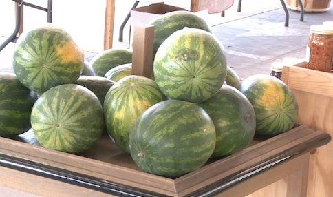 Watermelon ranks 2nd in most bought spring and summer time produce