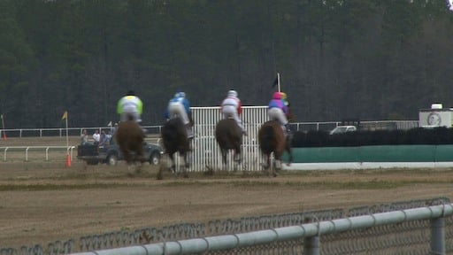 The horse races are only a small part of what goes on at Carolina Cup