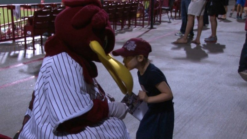 A young fan gives Cocky a kiss during a University of South Carolina baseball game
