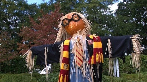 This scarecrow is inspired by Harry Potter.