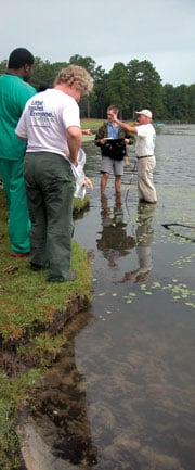 John Nelson collects aquatic plants with his Biology 527 plant taxonomy class at Sesquicentennial State Park.     Special to The Carolina Reporter