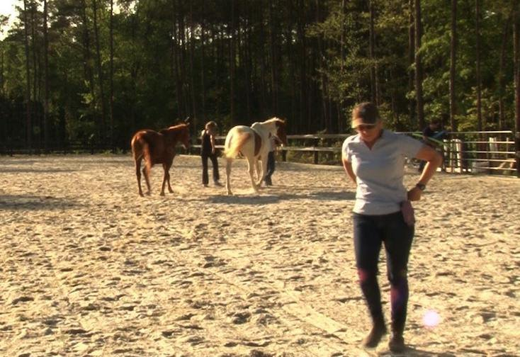 Equine specialist Christy Rew said she has seen quick improvement with clients through equine assisted psychotherapy.