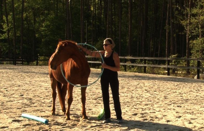 Clients interact with horses at Pathways Growth and Learning Center to help with anxiety and depression.
