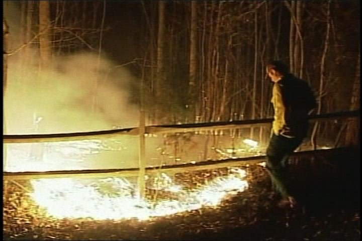 Wildfires ripped across South Carolina this week.  Horry County had the largest fire which covered over 400 acres.