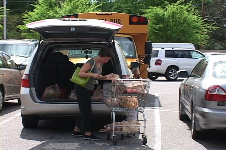 Grocery shopping is one of the many tasks housewives do for their families.