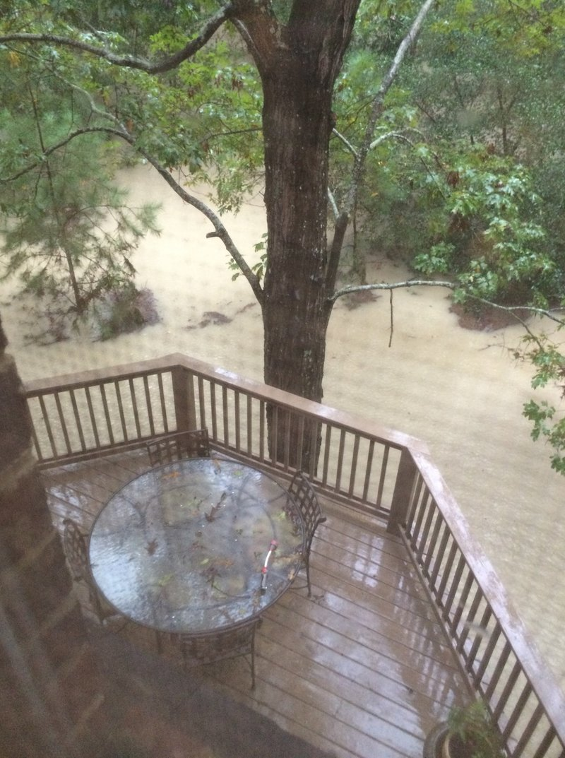 This is a view from the deck.  The flood water turned the back yard into a virtual lake.
