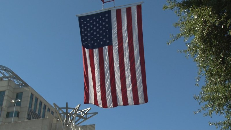 Hundreds of flags were flown during the Veterans Day Parade.