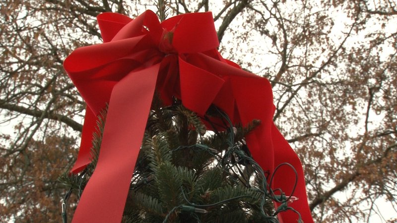 The participants are given clear instructions on how to decorate the tree, which includeds topping it off with this bright red bow.