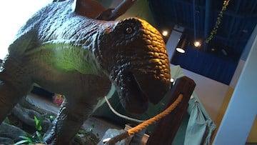 Edventures roaring robtic stegosaurus